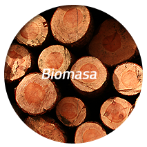 biomasa